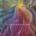 Sny - Okno na przeznaczenie Amy Coello